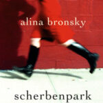 """Schmöker: """"Scherbenpark"""" von Alina Bronsky"""