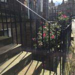 "Fernweh: ""Sunny Scotland – Edinburgh"""