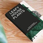 """Heimat: """"Ein Interview mit Benjamin Wurster über Leafy House Plants"""""""